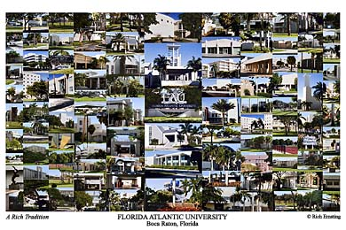 Florida Atlantic University Campus Art Prints Photos Posters