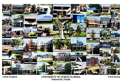 University Of North Florida Campus Art Prints Photos Posters