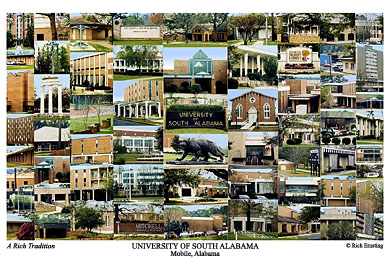 University Of South Alabama Campus Art Prints Photos Posters