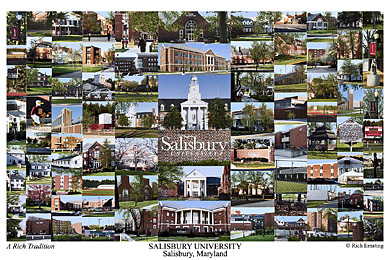 Salisbury University Campus Art Prints Photos Posters