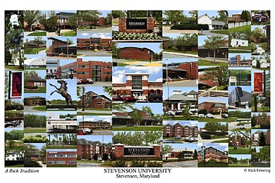 Stevenson University Campus Art Prints Photos Posters