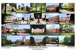 Fontbonne University Campus Art Print