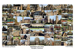 Rhodes College Campus Art Print