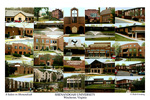Shenandoah University Campus Art Print