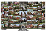 Salem College Campus Art Print