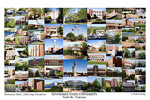 Tennessee State University Campus Art Print