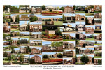 Tennessee Technological Unversity Campus Art Print
