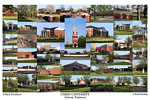 Union University Campus Art Print