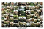 Wellesley College Campus Art Print