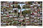 Winthrop University Campus Art Print
